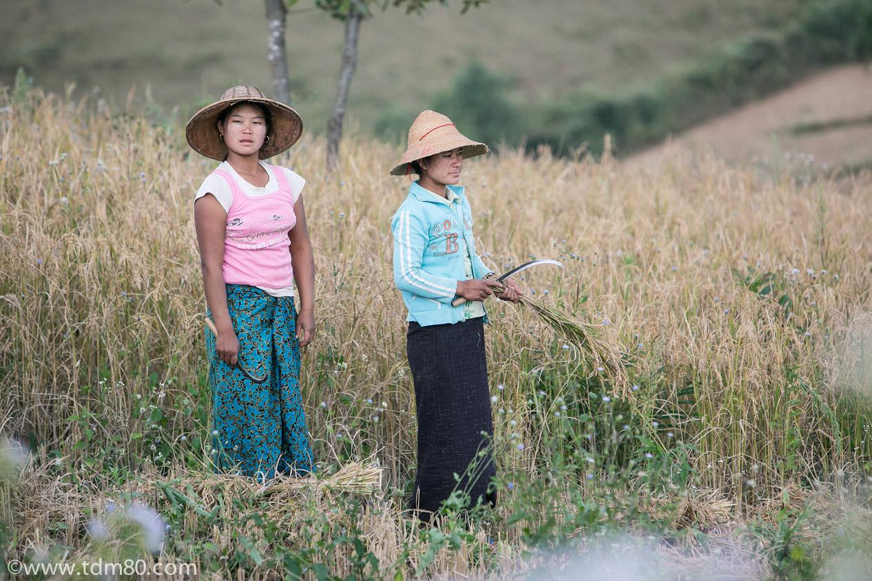 tdm80_Birmanie_Kalaw_Lac_Inley_Trek_32