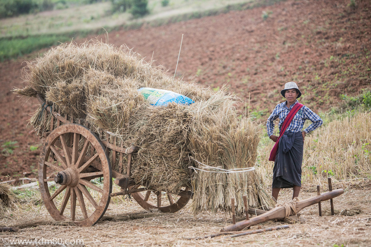 tdm80_Birmanie_Kalaw_Lac_Inley_Trek_33