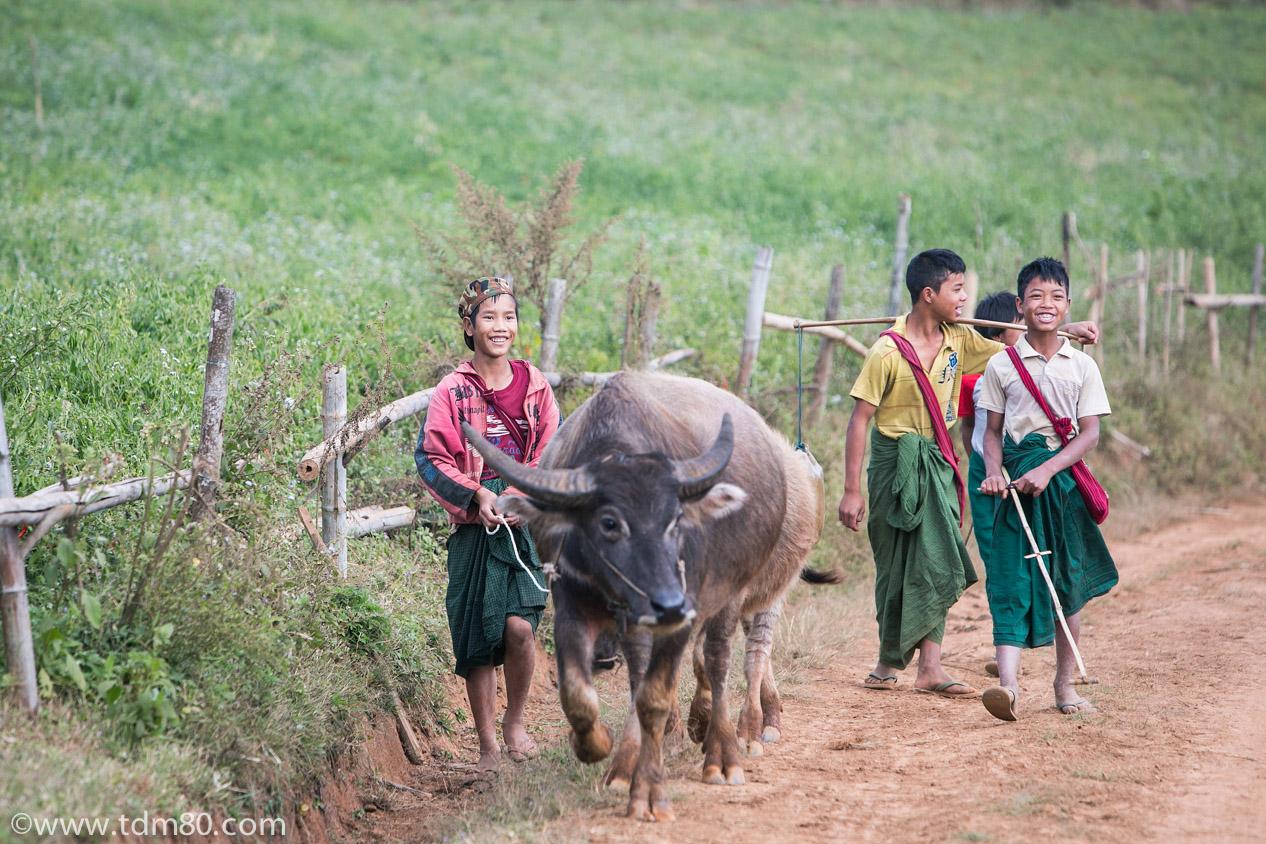 tdm80_Birmanie_Kalaw_Lac_Inley_Trek_37