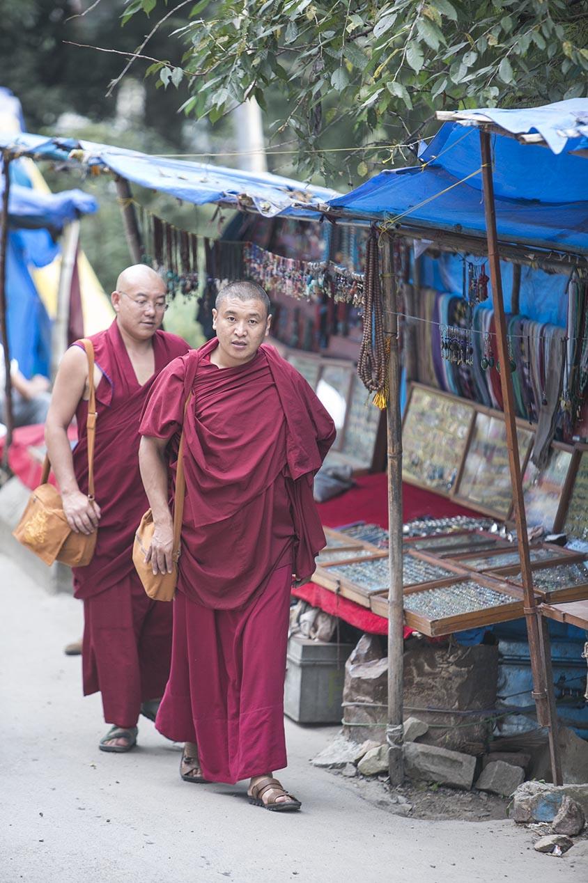 Mc leod Ganj 2 moines street